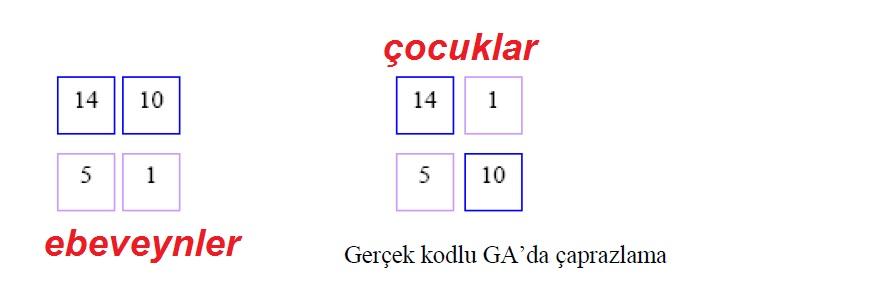 Gerçek kodlu GA'da çaprazlama nasıl yapılır?